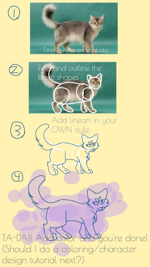 Cat anatomy *Tutorial/tips* | Warriors Amino