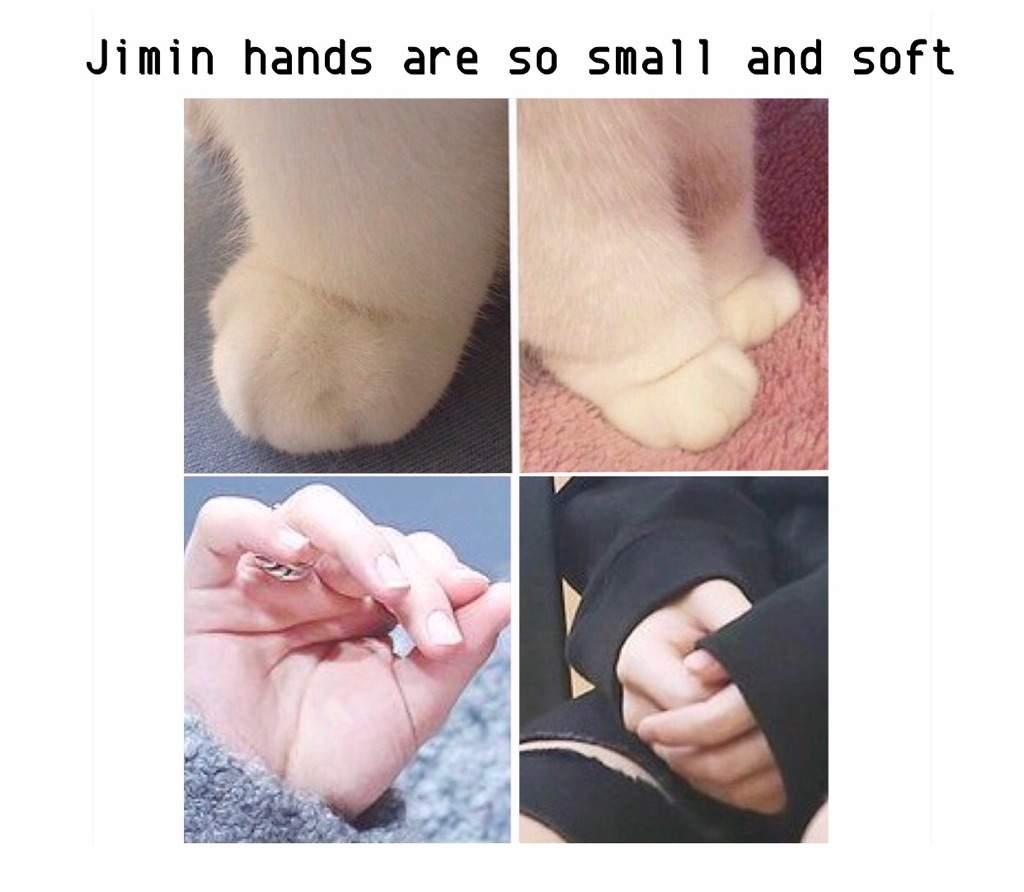 Jimin hands   ARMY's Amino