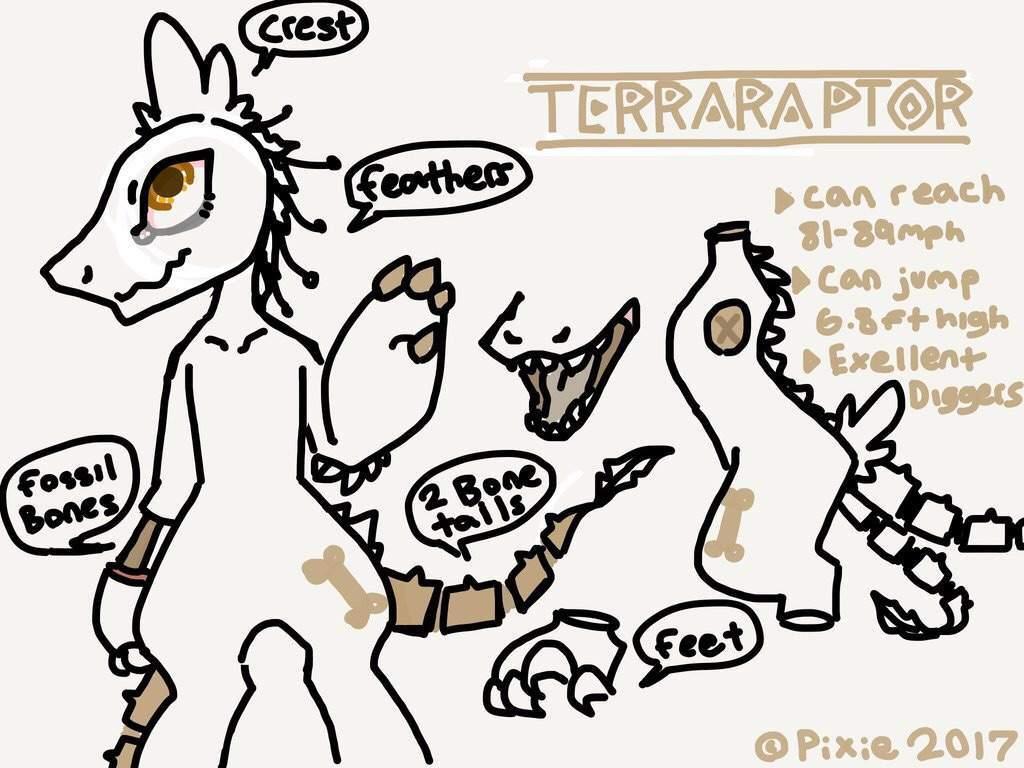 Terraraptor blog