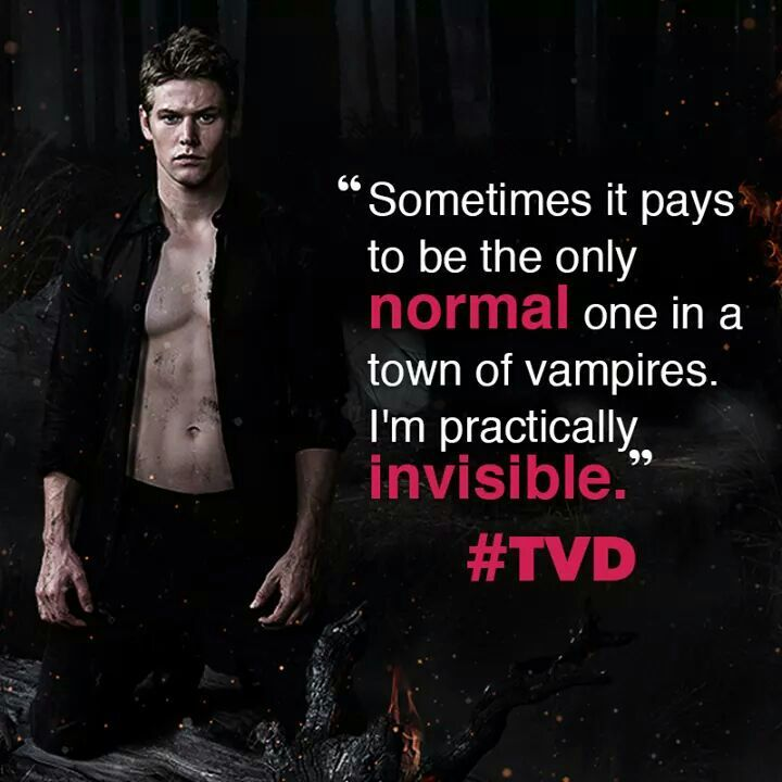 The vampire Diaries quotes. | TVD Amino