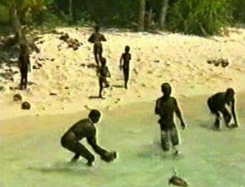 Isla ms peligrosa del mundo investigacin amino amino la guerra de los sentineleses al exterior se hizo bien evidente en 2006 cuando asesinaron a dos pescadores ilegales que se acercaron a su costa y los altavistaventures Choice Image