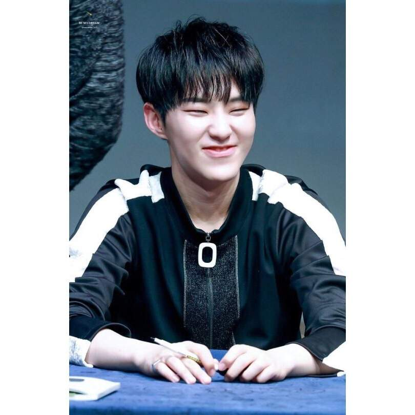 Seventeen S Eye Smile Appreciation Carat 캐럿 Amino