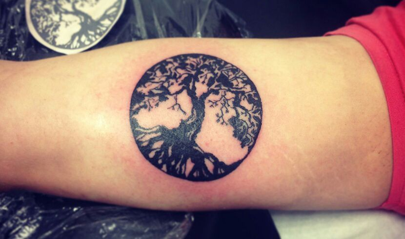 Tatuaje Del árbol De La Vida Love Tattoos Amino