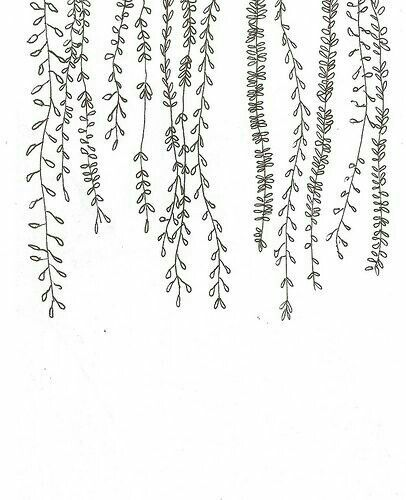 Flower Drawing App: Plant Doodles For Bullet Journaling