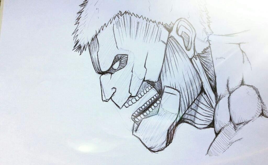 Dibujo De Titan Attack On Titan Amino