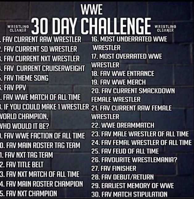 WWE 30 Day Challenge (DAY 1)