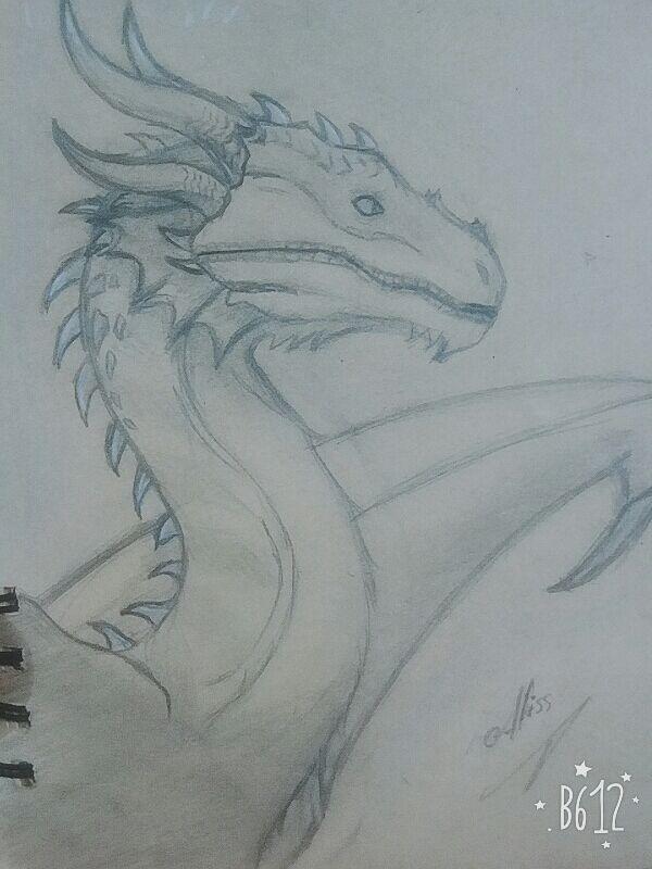 Dragon A Lapiz Arte Amino Amino