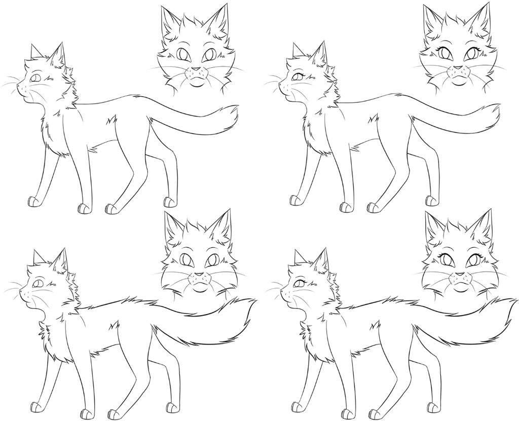 Fromat 🐱  German Warrior Cats Amino
