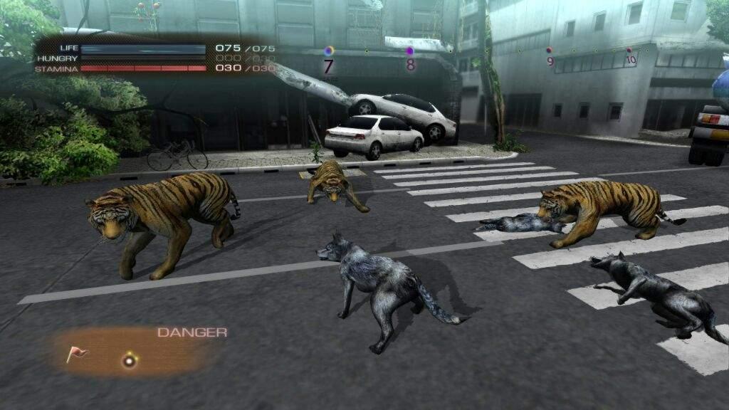 My top 5 wolf games | Wolf Amino Amino
