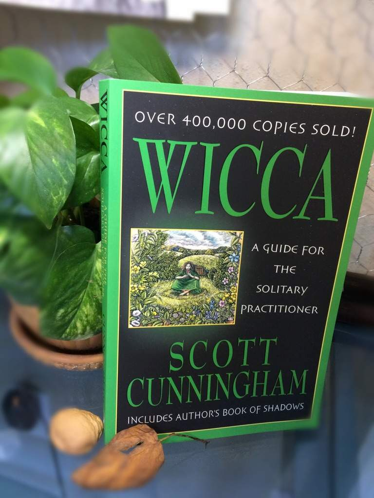 Wicca: a guide for the solitary practitioner | Pagans