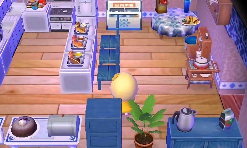 Update Kitchen Tour Animal