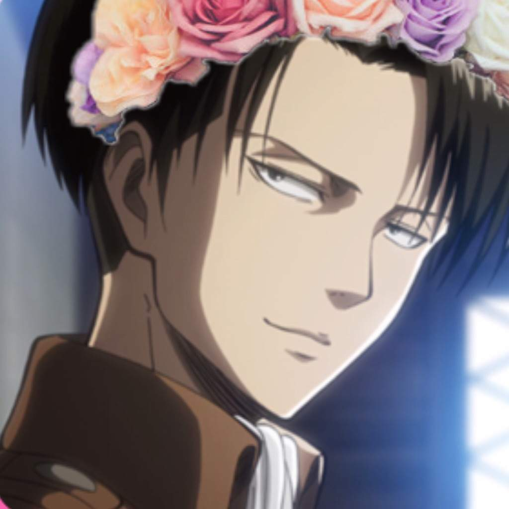 Flower crown levi attack on titan amino izmirmasajfo