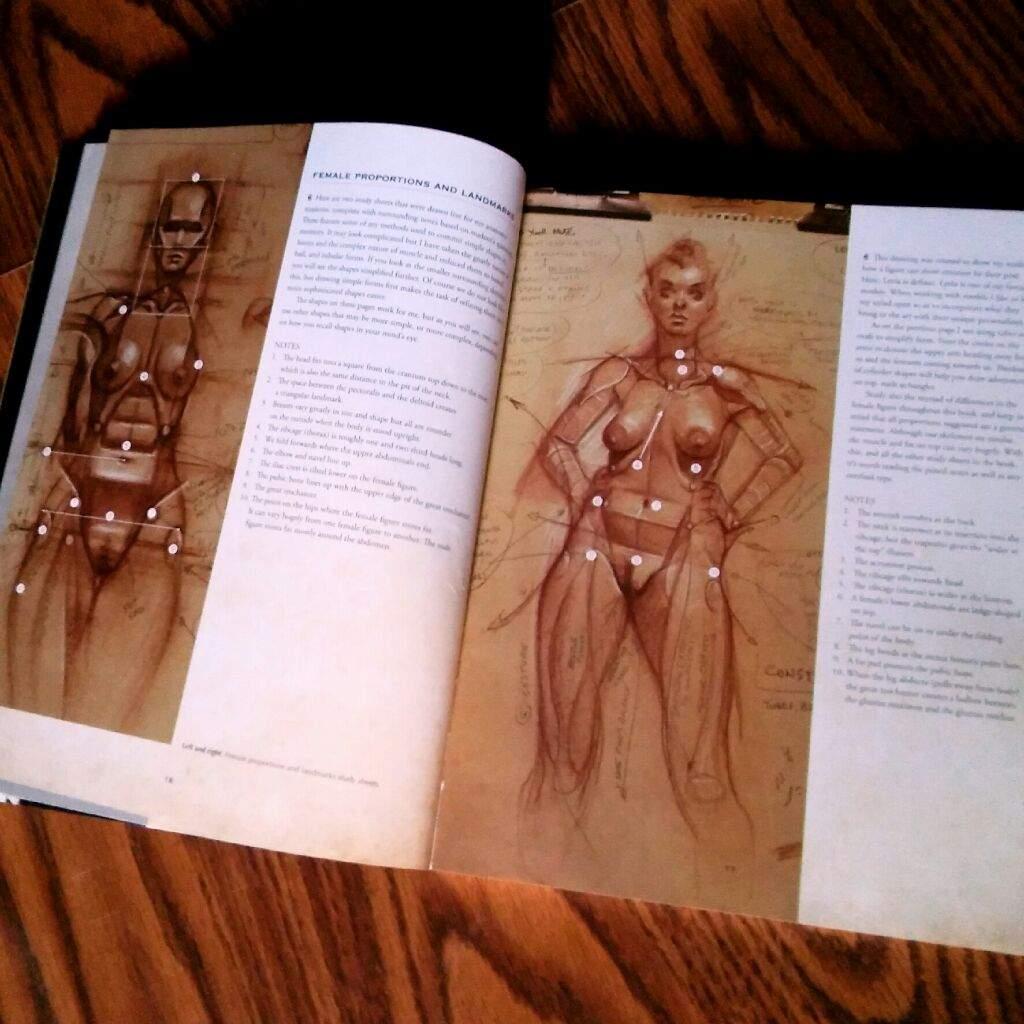 Anatomía del Estilo | Managakas Y Dibujantes Unidos Amino