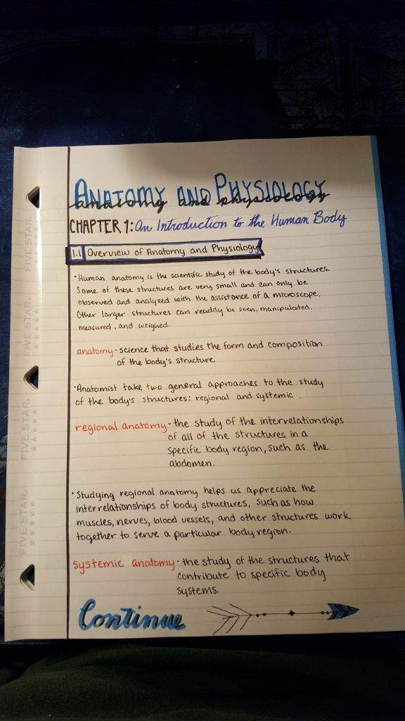 🤓Anatomy and Physiology Notes🤓 | Studying Amino Amino