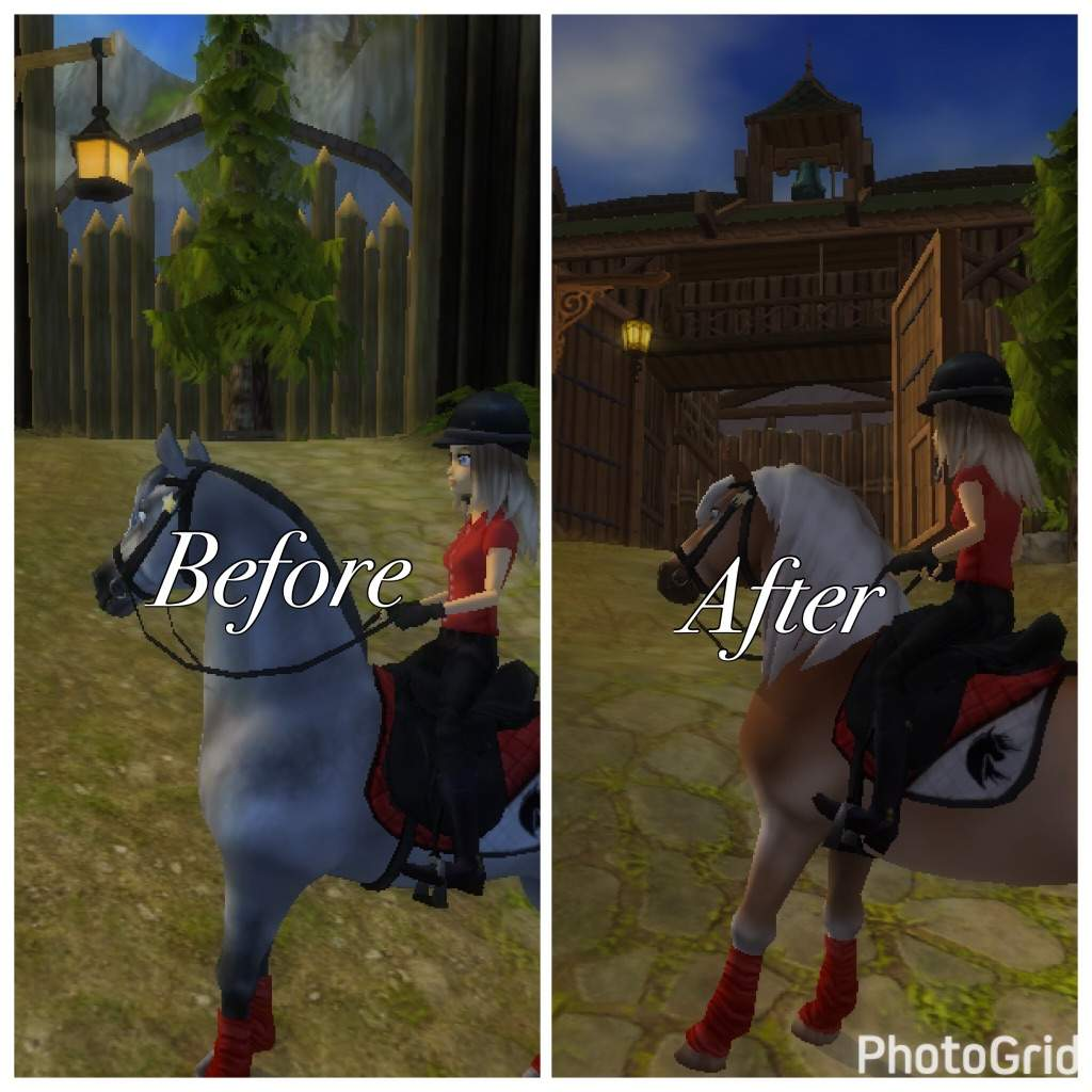 New Firgrove Star Stable Online Amino - Before and after achorse stable