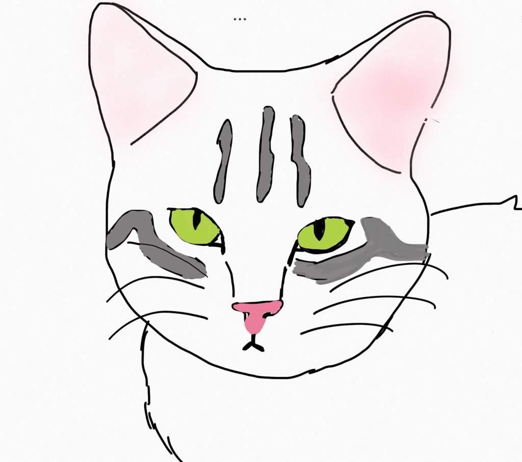 totorial como desenhar um gato realista mundo animal amino