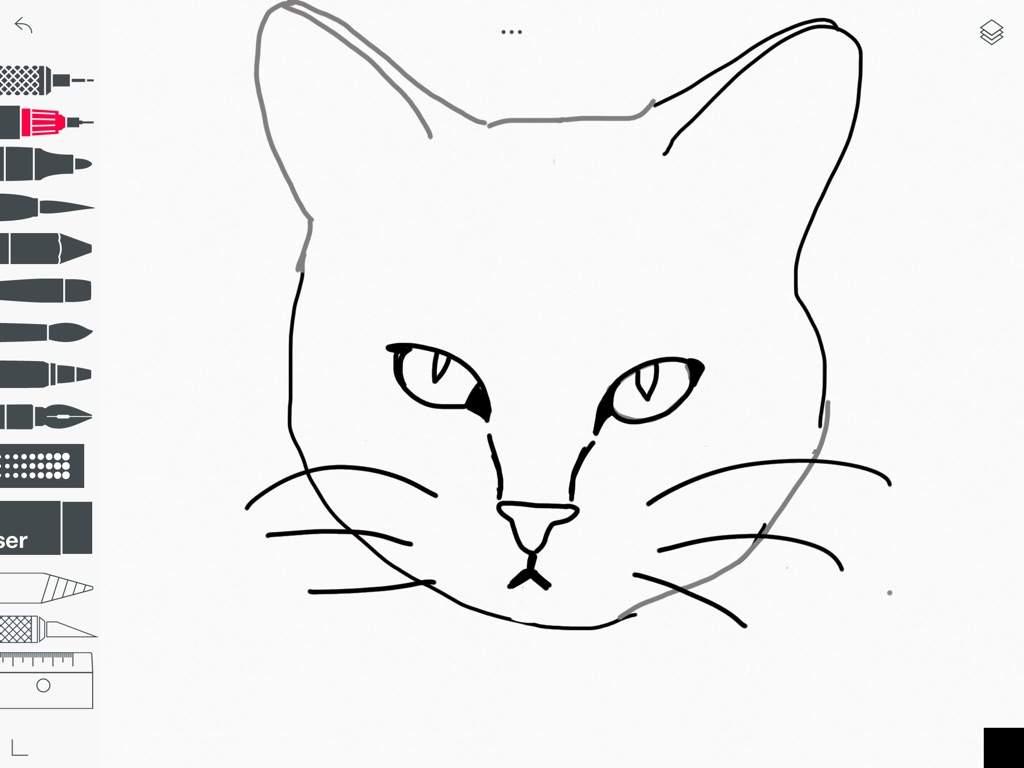 Totorial Como Desenhar Um Gato Realista Mundo Animal