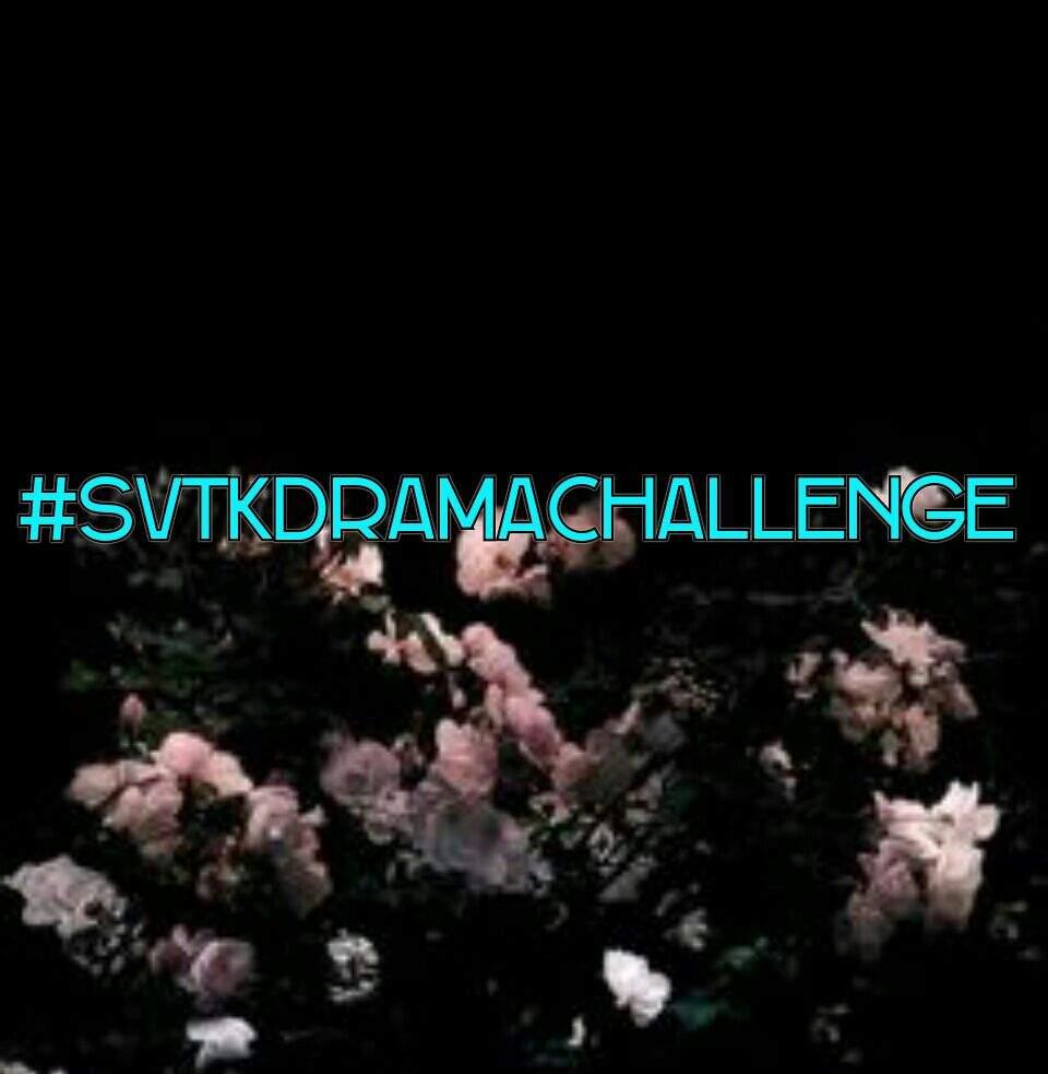 Seventeen Kdrama Challenge #SVTKdramaChallenge | Carat