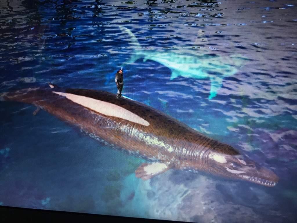 Basilosaurus | Ark Survival Evolved Amino