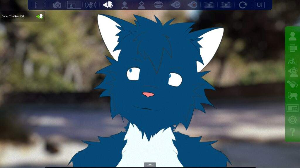 2D Cat for FaceRig (incomplete test character) | Furry Amino