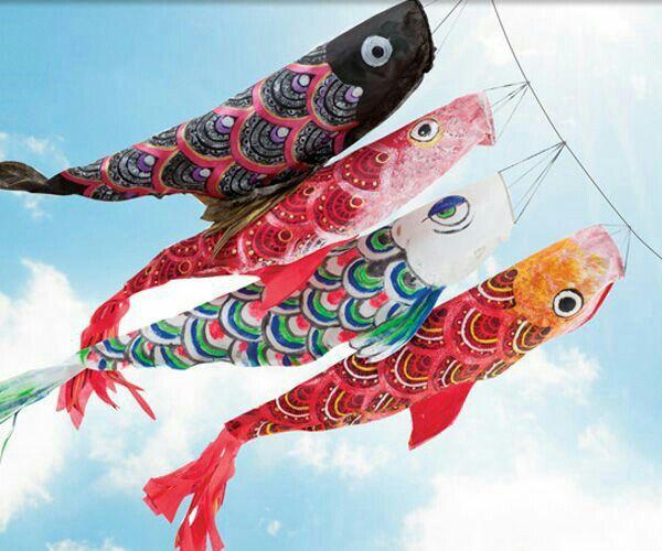 Samurai and koinobori flag cartoon amino for Japanese koi windsock
