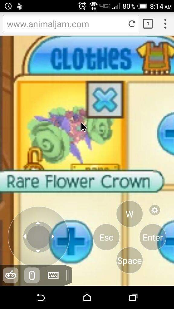 Flower Crown Aj Worth - Flowers Healthy