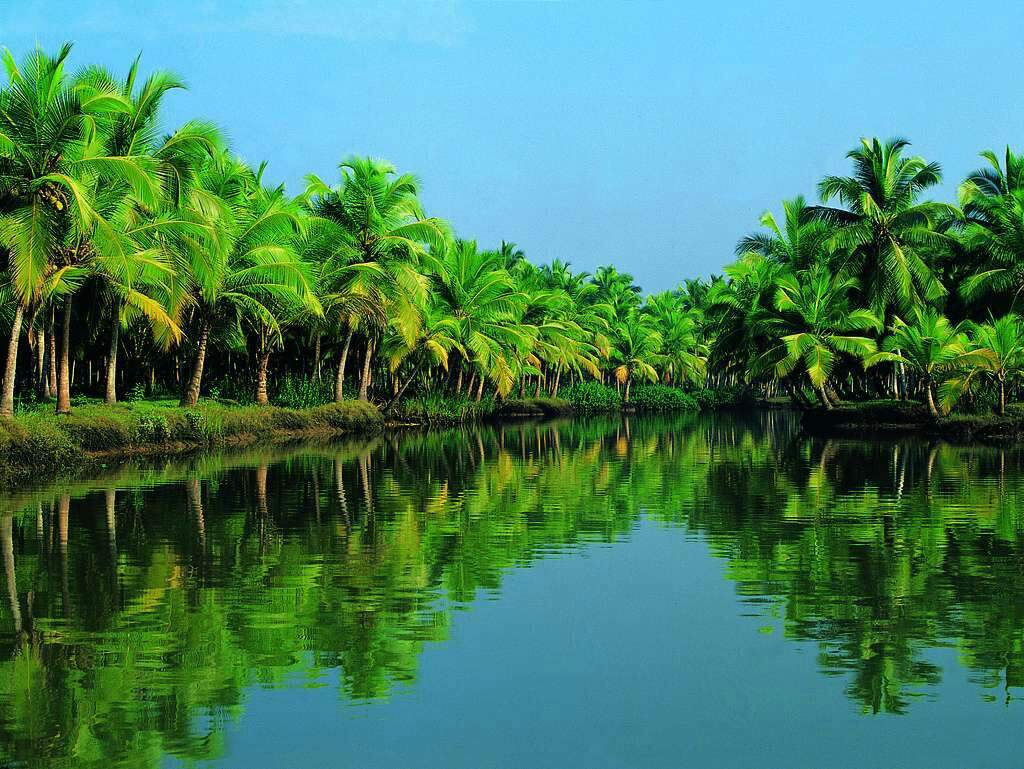 'Kerala' Means 'Land Of Coconuts'