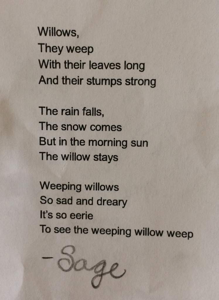 Poem Weeping Willow Aj Amino Amino
