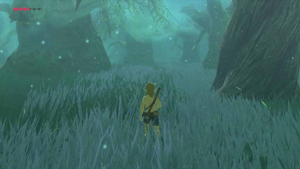 BotW) Getting Through the Lost Woods Without Spoilers