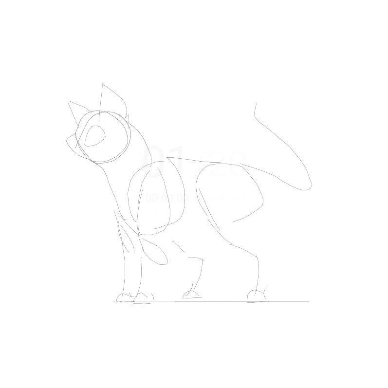 Step by Step Standing Cat Tutorial/Process of How I Draw | Warriors ...