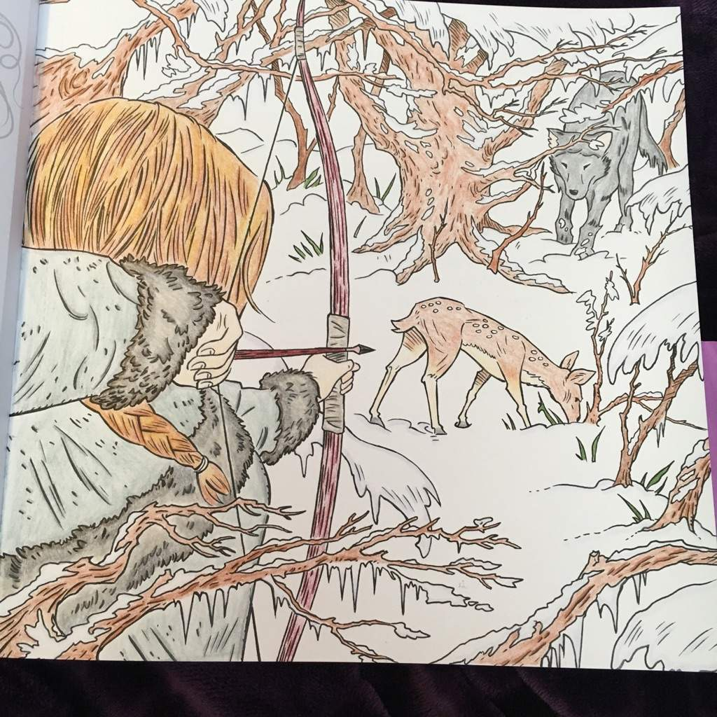 Acotar Coloring Book Completed Page Sarah J Maas Amino