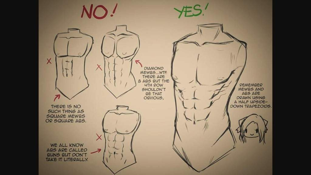 Male Body References