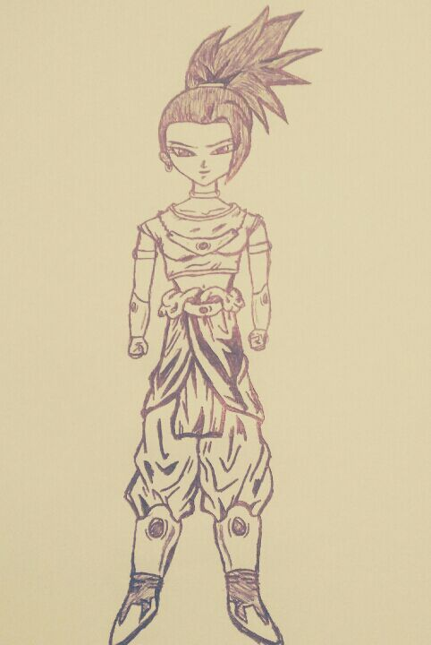 Kale Dragon Ball Super Dragon Ball Amino Amino