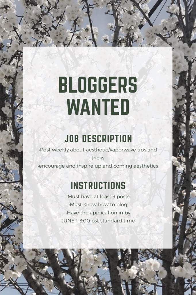 Anyone up for a Job?? | Official Aesthetic Amino