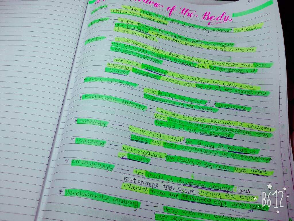 My Anatomy and Physiology Notes | Studying Amino Amino