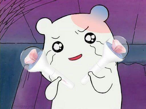 Seventeen 'Don't Wanna Cry' First Win!😍🎉 | K-Pop Amino
