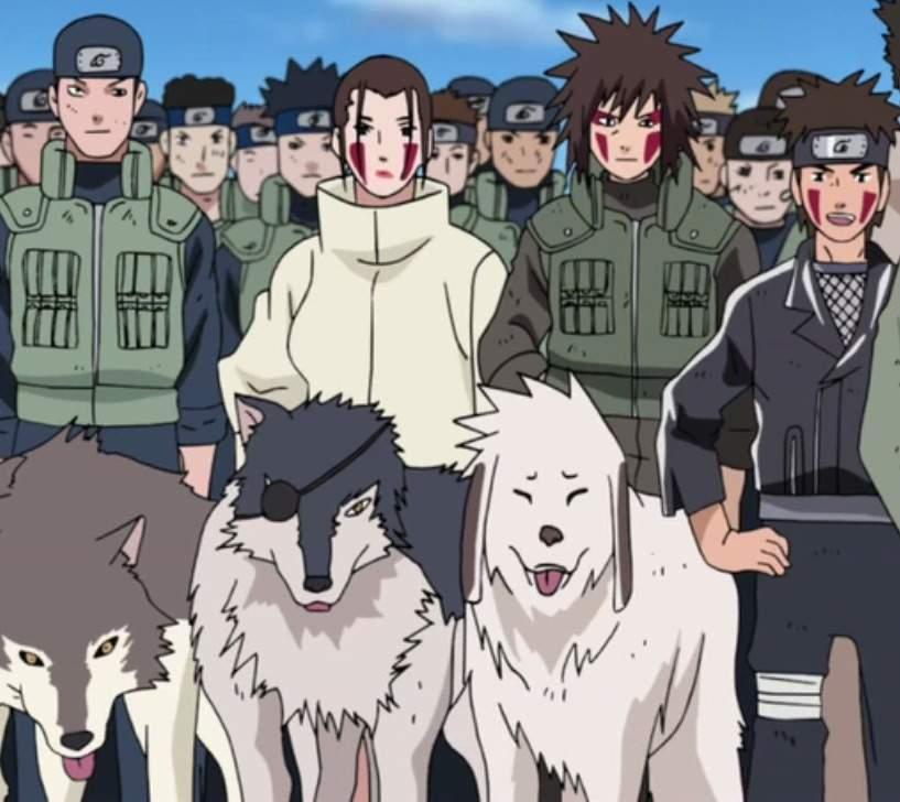 Curiosidades de Hinata, Shino, Kiba y Akamaru | •Boruto ...