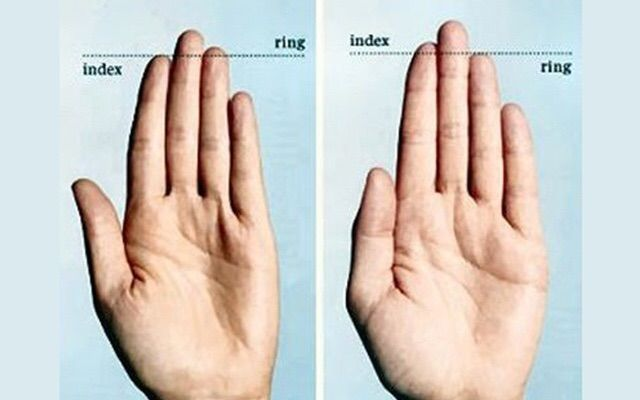 Finger Lengths Overview and Flexiblity | The Witches' Circle