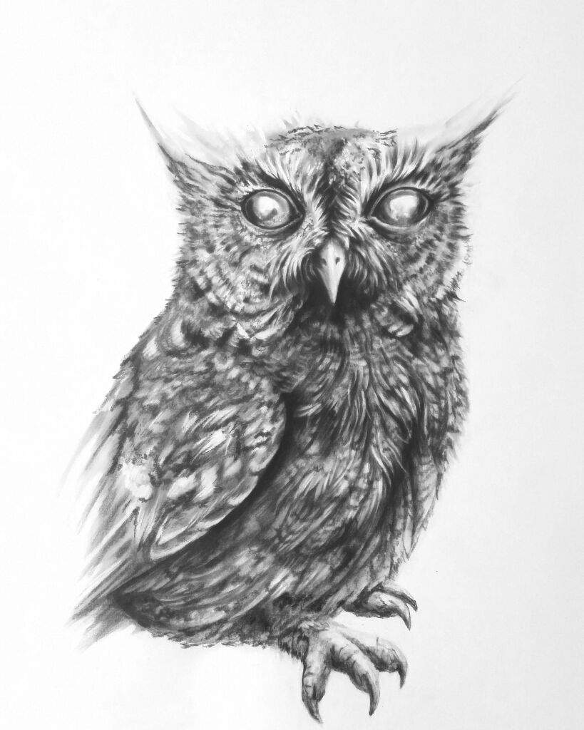 blind owl art amino