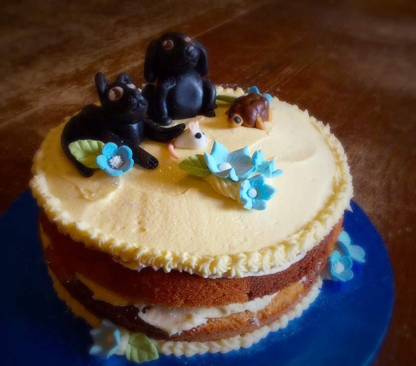 Marble Birthday Cake Food Amino