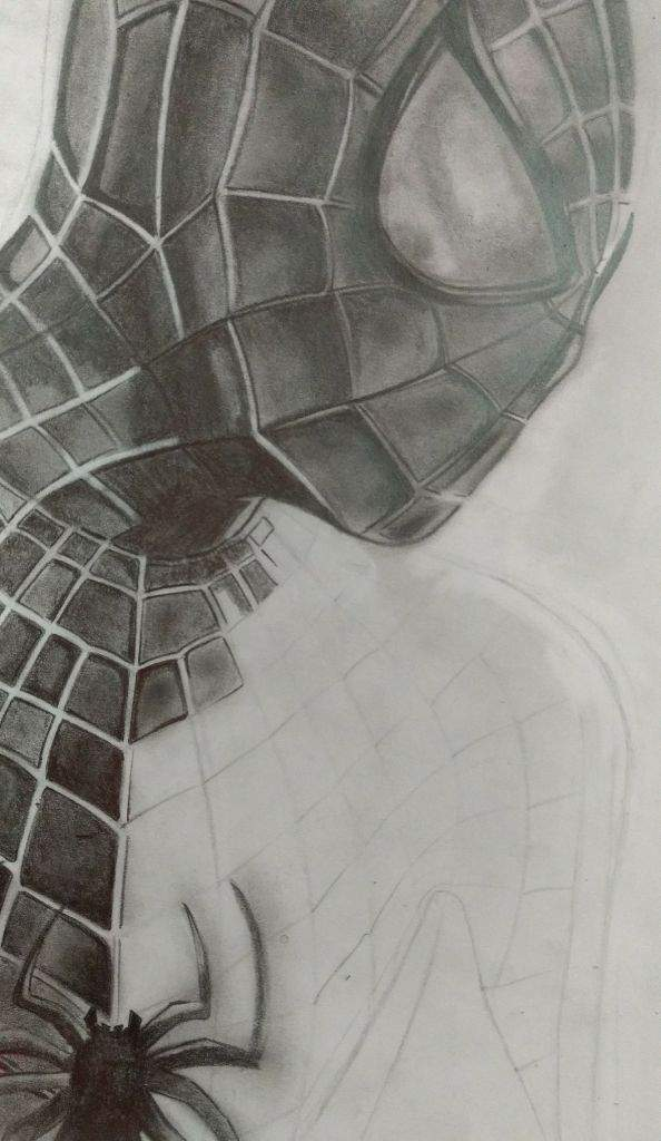 Dibujos De Spiderman A Lapiz