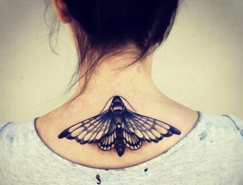 Significado De Un Tatuaje De Mariposa En Dependencia De Donde Se