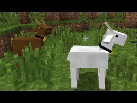 10 Animal Ideas For Minecraft Minecraft Amino