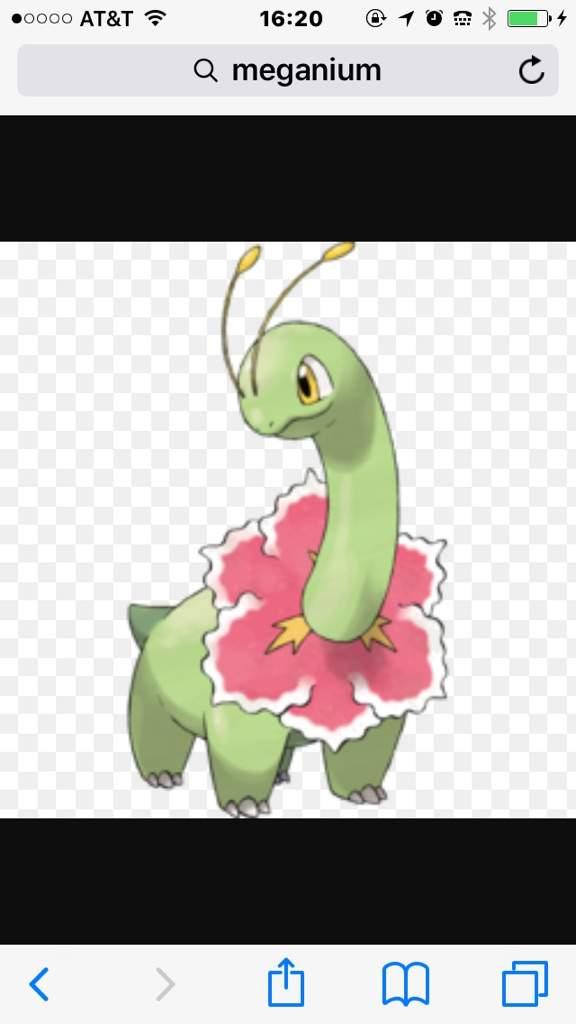 how to get tm sweet scent in pokemon y