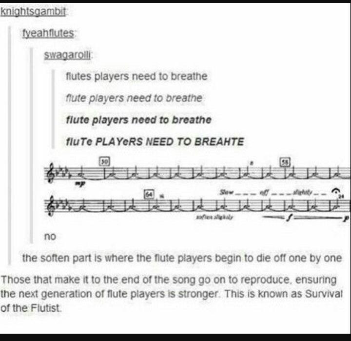 I play flute | Virtual Space Amino