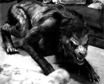 Werewolf Horror Short Film