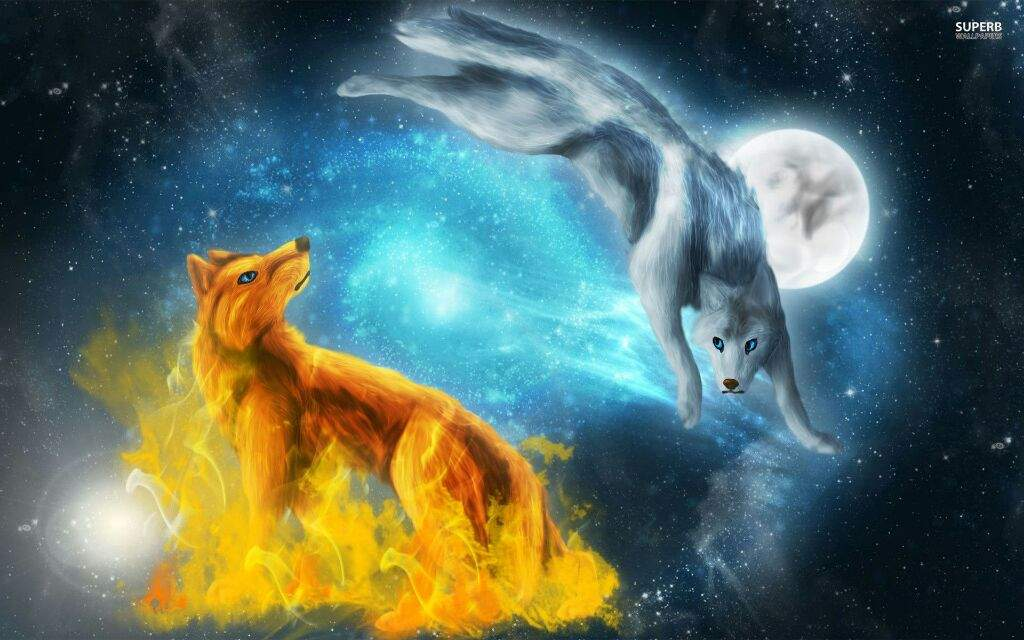 Image Anime Wolf Wallpapers