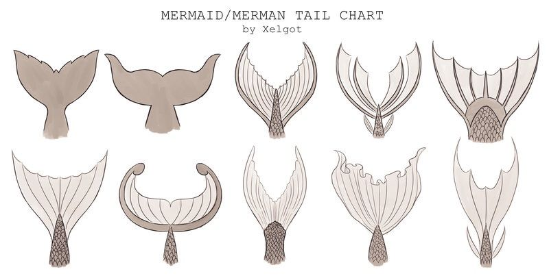 Mermaid Drawing Refrence Sheet | Wiki | Artists For ...