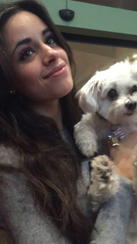 Camila With Puppies Camilizers Amino