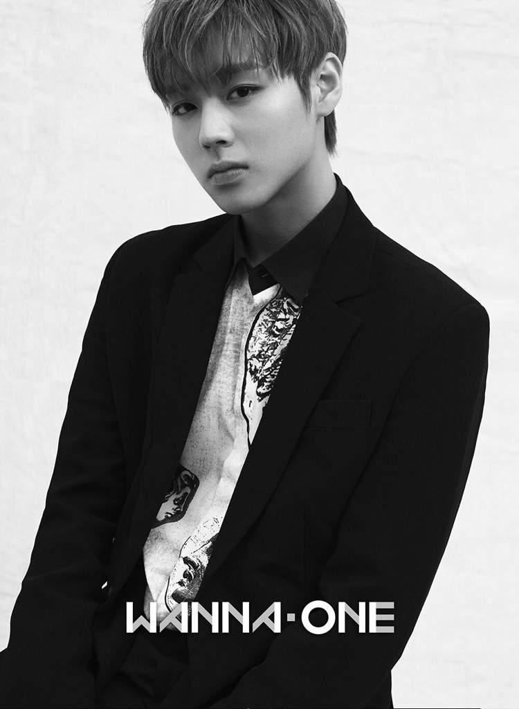 Wanna One Profile [PHOTO]   K-Pop Amino